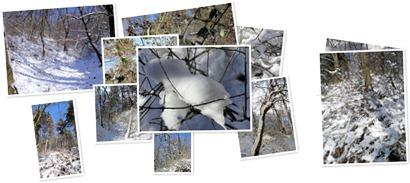 , Peisaj de iarnă, startachim blog
